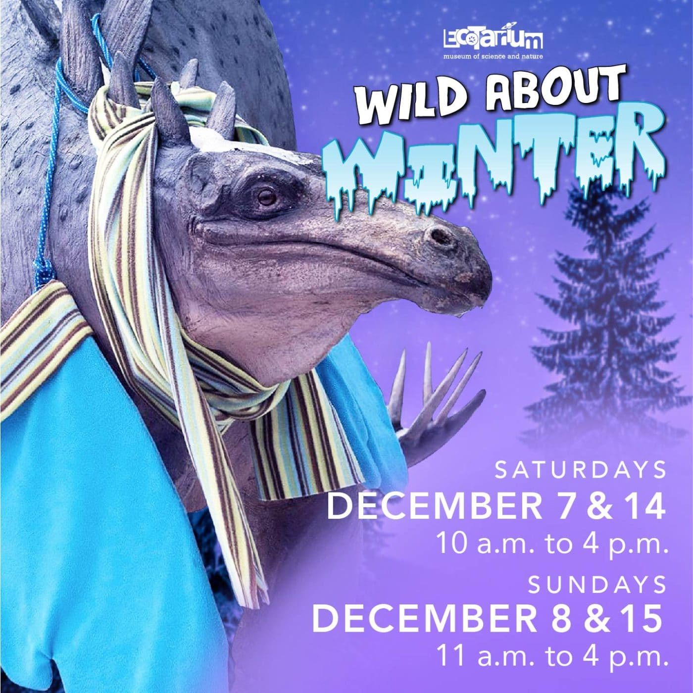 Wild About Winter 2019v2 01