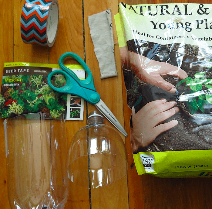 Download: DIY Indoor Bottle Garden Activity Sheet